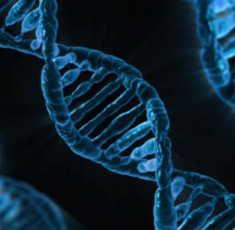 DNA, la nuova frontiera del Marketing