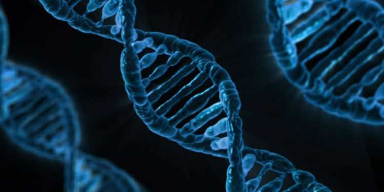 DNA, la nuova frontiera del Marketing