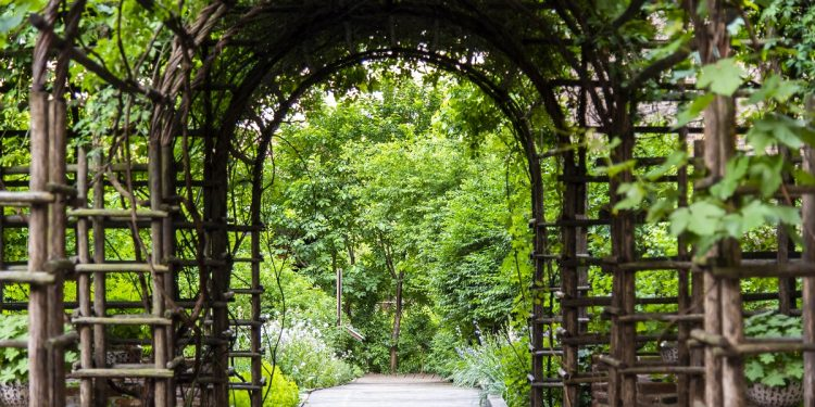 Giardino Botanico Medievale di Palazzo Madama